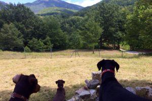 Terni - Salto De Cieco (Ombrie-Italie)