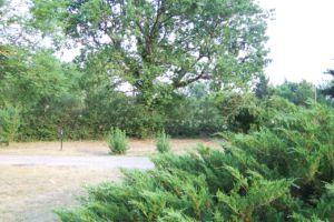 Montsalés 12260 Aveyron
